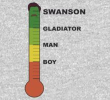 Swanson Meter by Eagle123