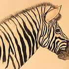 Zebra by aprilann