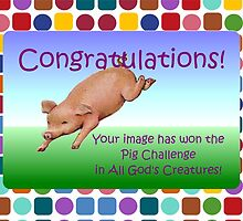 Banner AGC Pig Challenge by aprilann