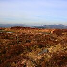 Inishowen Mountains by Adrian McGlynn