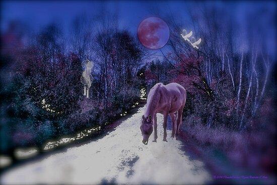 Mystical Dreaming by DreamCatcher/ Kyrah Barbette L Hale