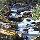 Little Stoney Creek  by Don Rankin