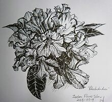 A rhododendron by kellyjones00