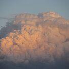 bushfire smoke by wendy lamb