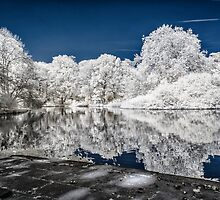 Lake Reflections - Infrared by BonniePhantasm