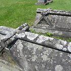 Below The Stone Crosses by Martha Medford