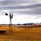 Australian Rural Landscape by jwwallace