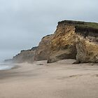 Pescadero State Beach by James Watkins