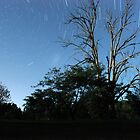 Star Trails - Oberon Night Sky by petejsmith