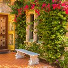 A Garen Entrance by Marilyn Cornwell