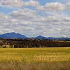 Stirling Range - Western Australia by Paul Gilbert