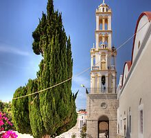 Cyprus Pine and Bell Tower by Tom Gomez