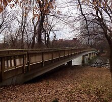Teddy Roosevelt Island Pedestrian Bridge  by Grace314
