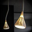 Twice the Light by Christina Backus