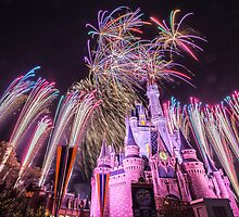 Wishes- Cinderella Castle- Walt Disney World by Jsprentallphoto