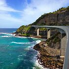 Sea Cliff Bridge by kelliejane