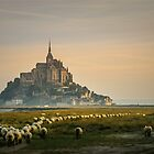Mont St-Michel by farhad1371