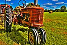 Farmall Tractor in Hayfield by Roger Passman