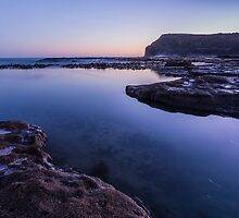 Curio Bay - New Zealand by Kimball Chen