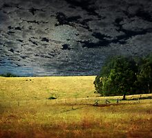 Moonlight Farmland by Clare Colins