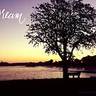 Ballina Pier - Dream by Susan Brown