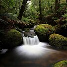 Cristmas creek .southface road Mt Baw Baw by Donovan wilson