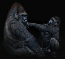 Daddy, is a left hook like this? by Jo-PinX