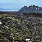 Pingvellir by Brendan Buckley