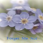 Forget Me Not Card by lynn carter
