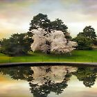 Fountain Reflections by Jessica Jenney