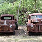 Two Rusty Utes by Sandy1949
