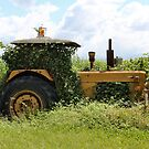Rusty Old Tractor by Sandy1949