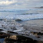Wild West Coast- Tasmania by LynneJ