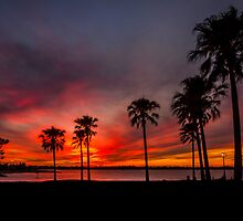 Blazing Sunset - Cleveland Qld Australia by Beth  Wode