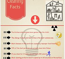 Interesting Cleaning Facts by Dorothy Hart