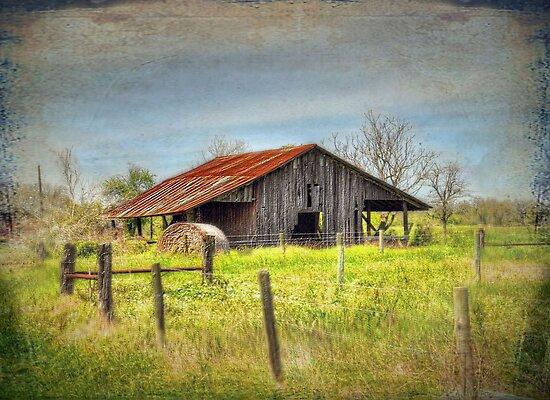 Old Barn by venny