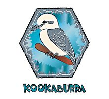 Kookaburra Bird Photographic Print