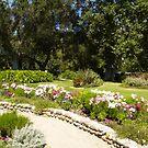Garden Path by Steve Hunter
