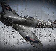 Spitfire over France  by outlawalien