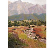 Dry Creek Bed by Theda DeRamus