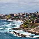 Rocky Coast of Puerto Rico by dbvirago