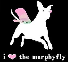 I love the Murphyfly by flapsofdestiny