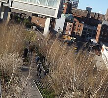 Aerial View of High Line, New York City's Elevated Garden and Park  by lenspiro