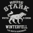 Team Stark by Digital Phoenix Design