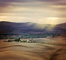 Sunrise in Tuscany by VaidaAbdul