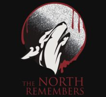 The North Remembers by qindesign