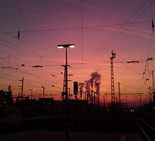Wires in Sunset by MarkusTheLion
