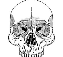 A simple Skull by sakha