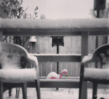 Cold Flamingo by HarmsArt