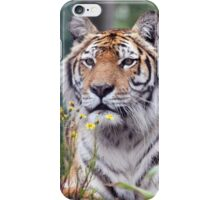 Island Tiger iPhone Case/Skin